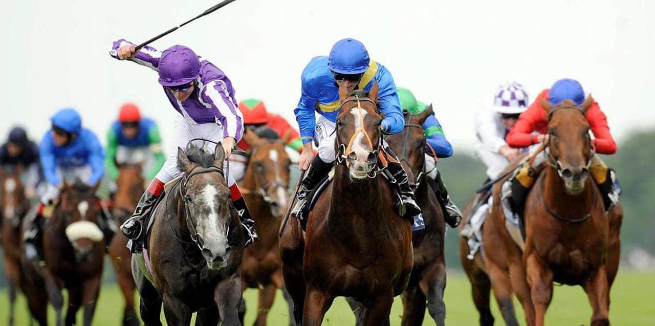 At Yarışı Nedir ve NAsıl Oynanır