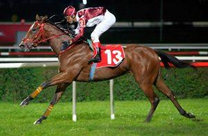 At Yarışı Taktikleri Nelerdir? Nasıl Kazanca Ulaşılır? Hangi Bahis Yapılmalı